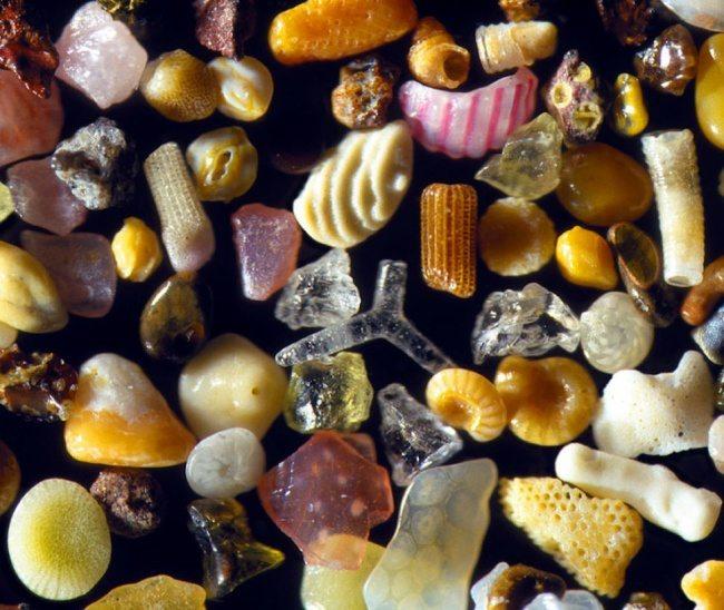 песъчинки под микроскоп