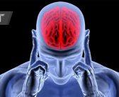 Стресът състарява мозъка