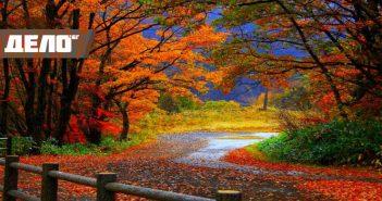10 любопитни факта за есента, които не знаете