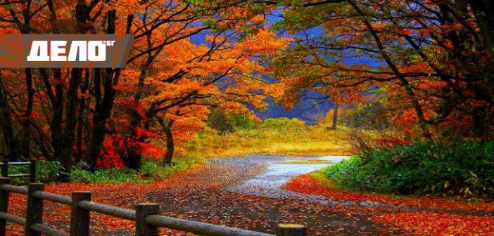 факти за есента