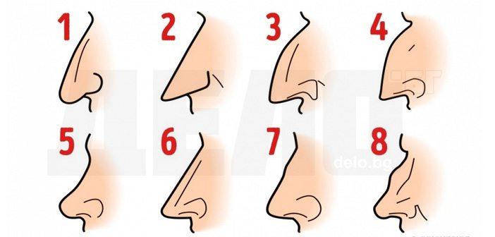формата на носа