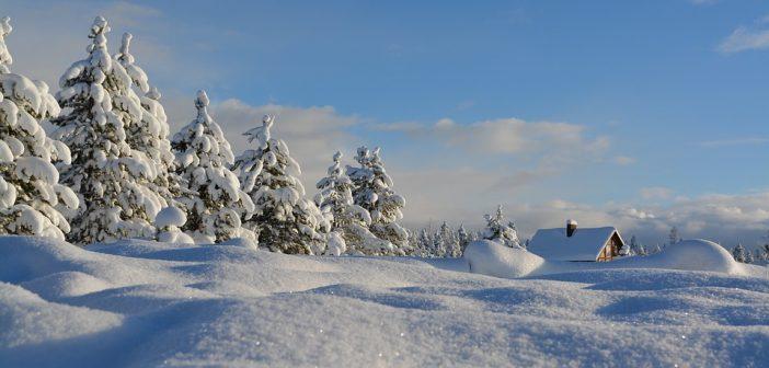 песни за зимата