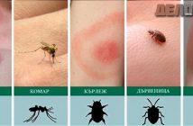 ухапвания от насекоми